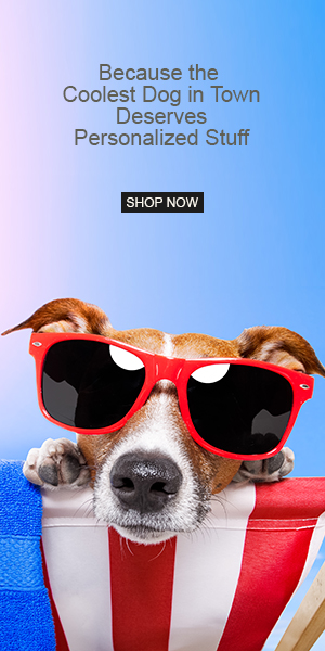 Shop Cool Dog Gear
