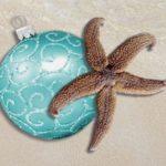 Christmas Starfish Holiday Cards