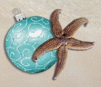 Christmas Starfish by Holiday Store